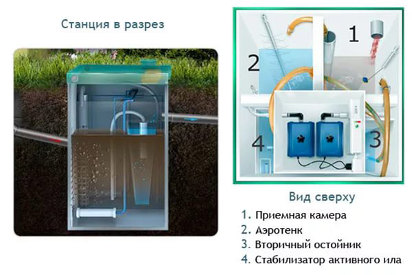Биодека 15 по недорогой цене в СПб